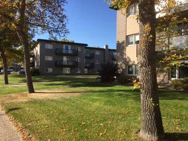 1 bed, 1 bath apartment in Albert Park – 62 Westfield Dr.